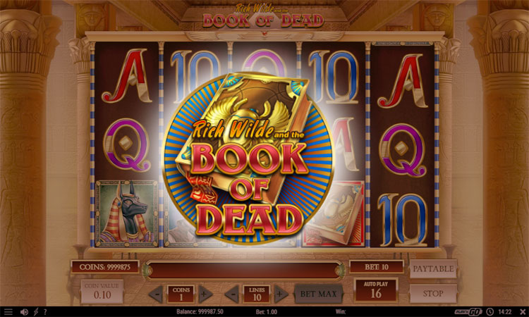 A preview into Book of Dead slot game