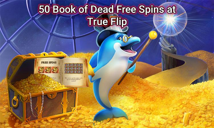Free spins at trueflip image